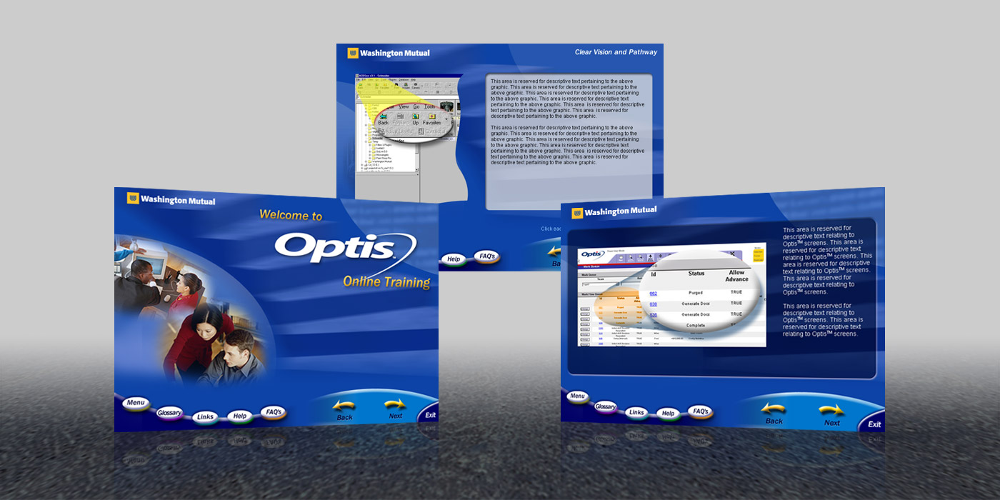 Washinton Mutual – Optis User Interface